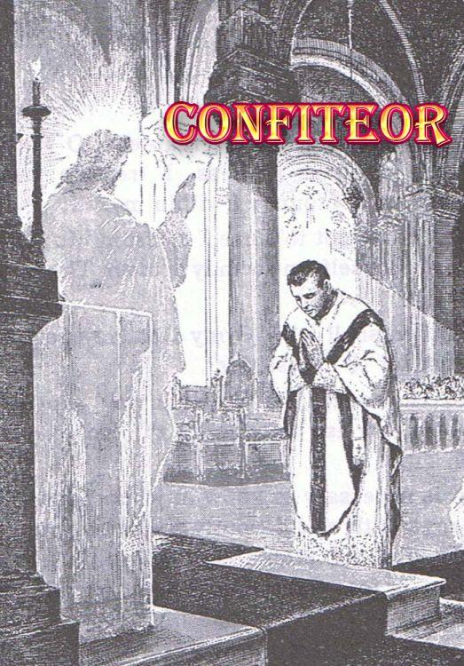 """Ho peccato in pensieri, parole, opere e omissioni"""" – Cooperatores ..."""