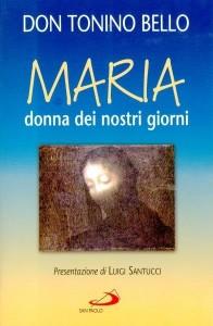 Il libro sotto accusa su Maria scritto da Bello.